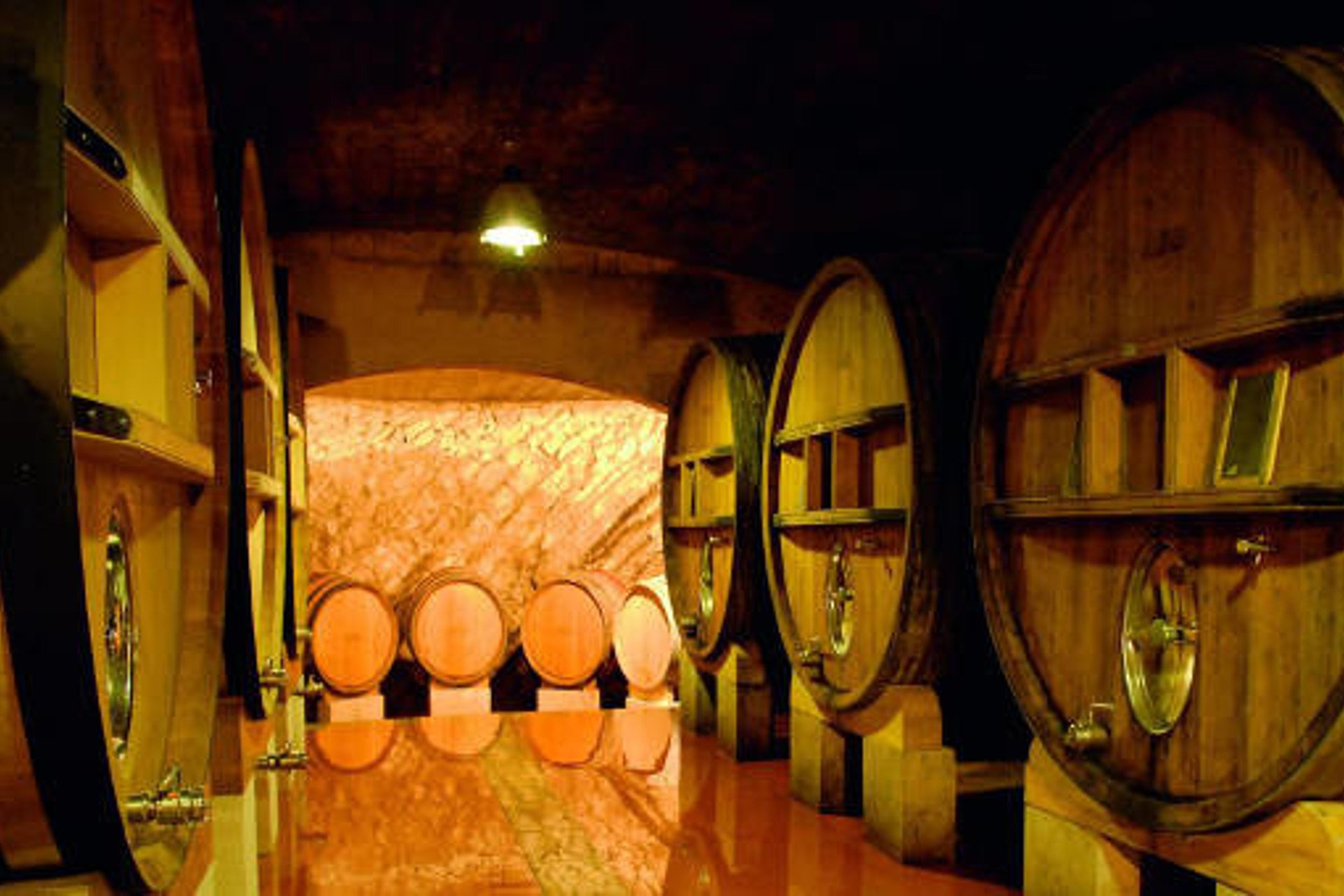cellar-wine-Saint Remy de Provence-Alpilles-Provence-France