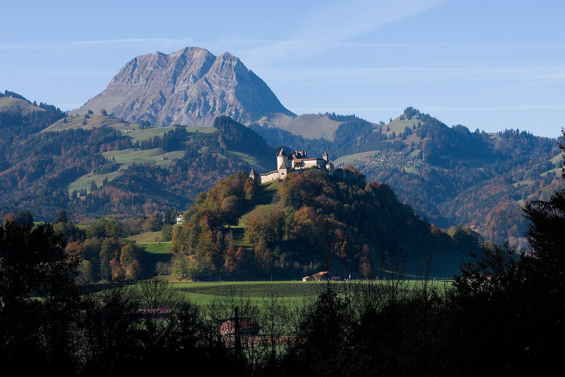 forêt-visite privée-château de Gruyeres-Alpes suisses-Suisse