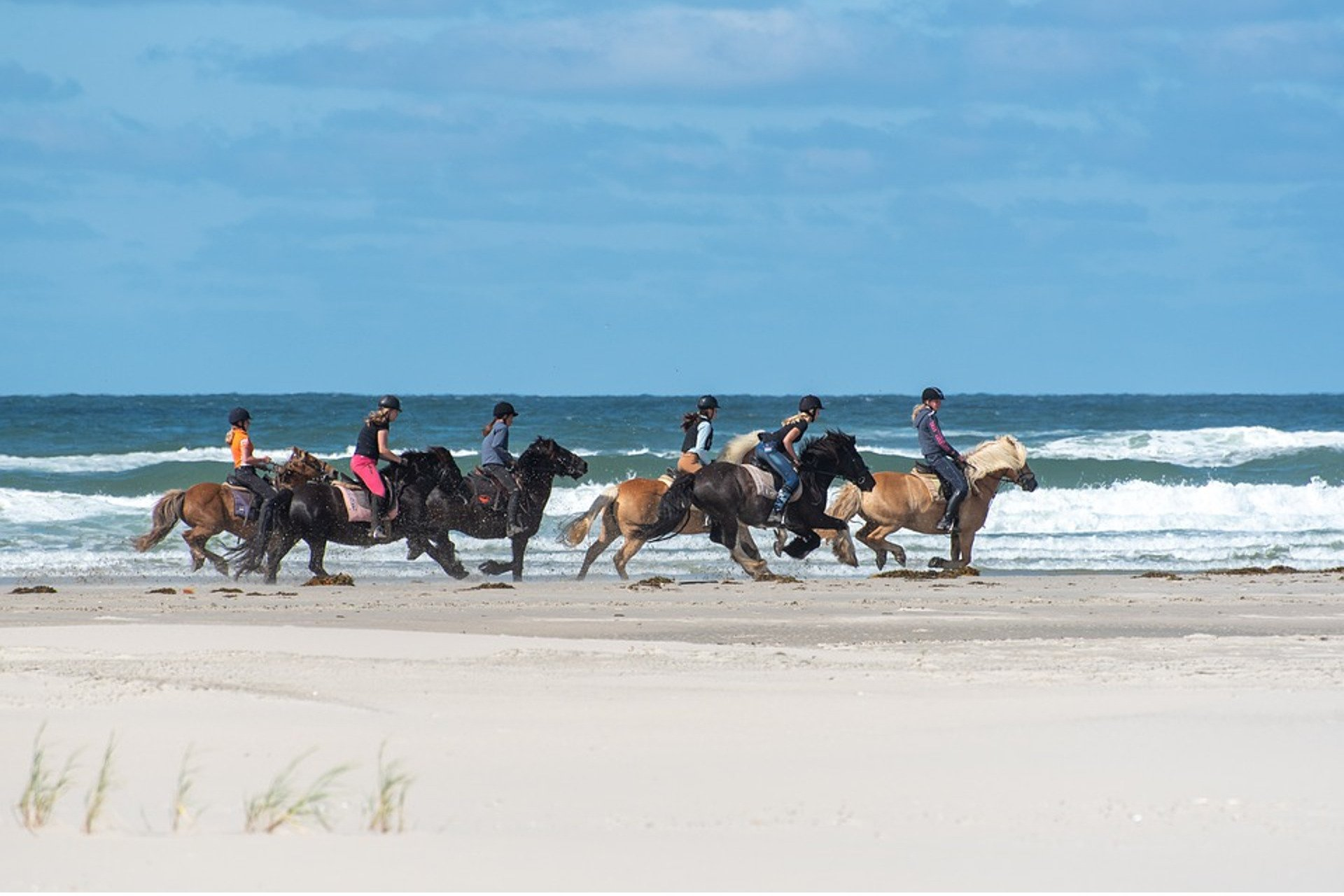six horses and their rider galloping along the beach
