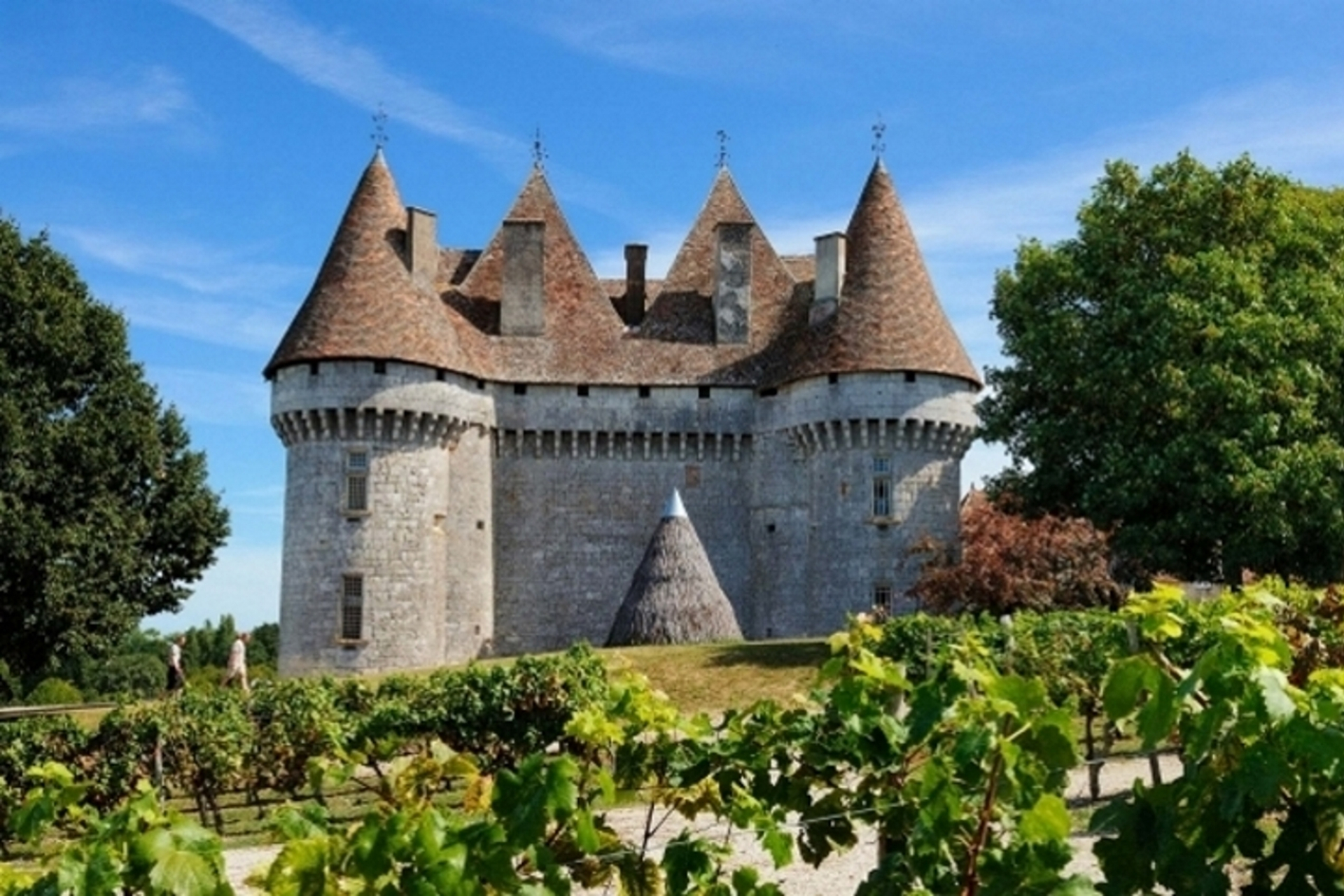 Perigord-dordogne-bergerac-monbazillac-France-wine-wineyards