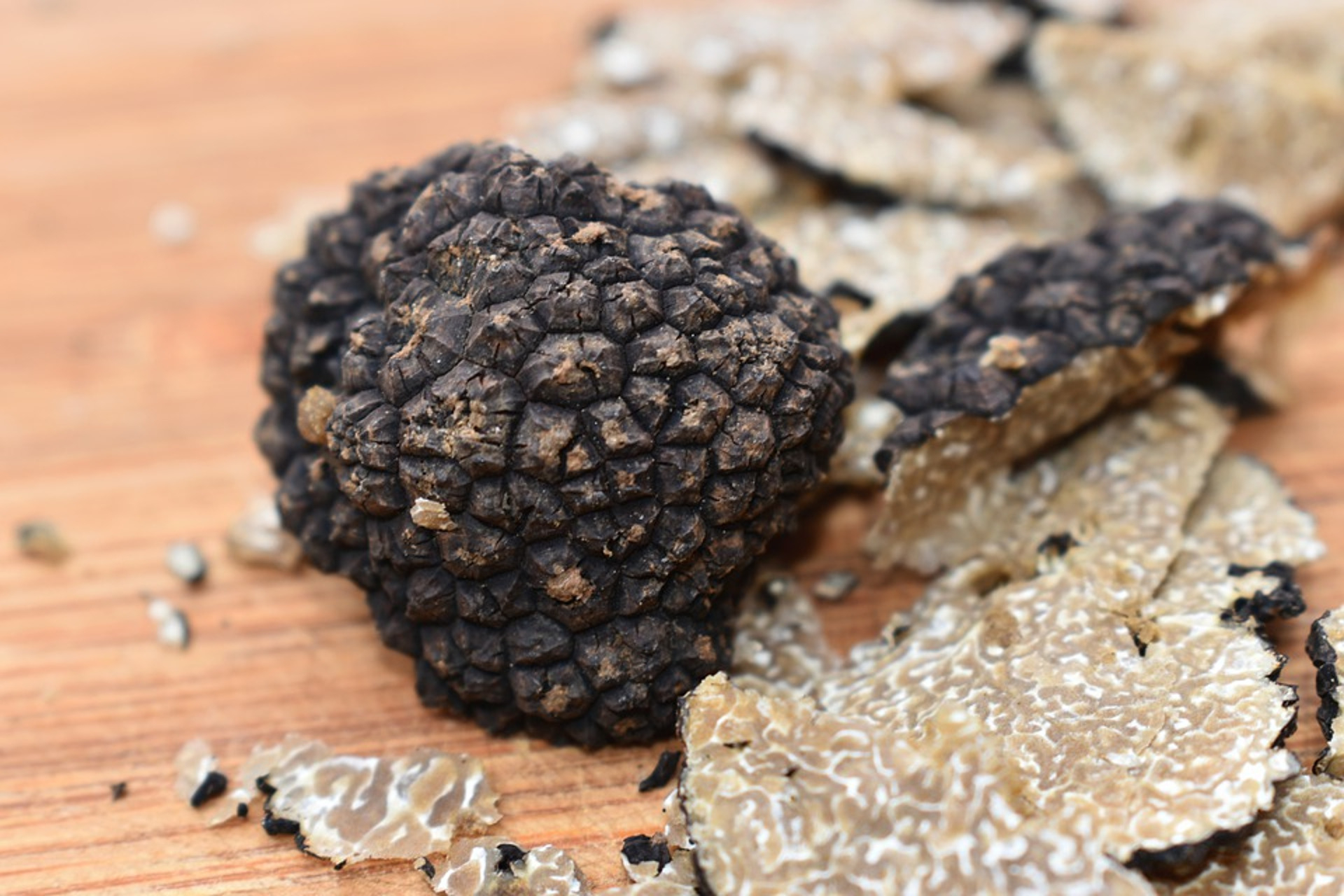 France-provence-avignon-truffle-private tour-tasting
