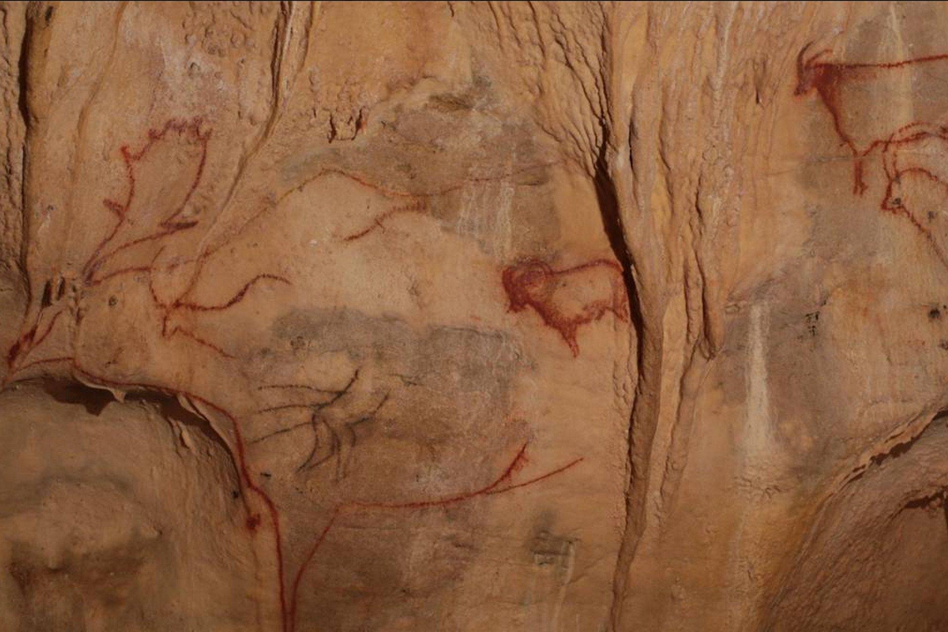 private tour-cavern-Perigord-Dordogne-Vezere-Cougnac-Sarlat-France
