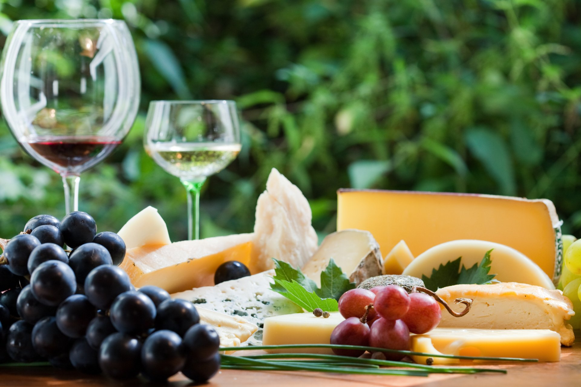 An appetizing selection of cheese and wine