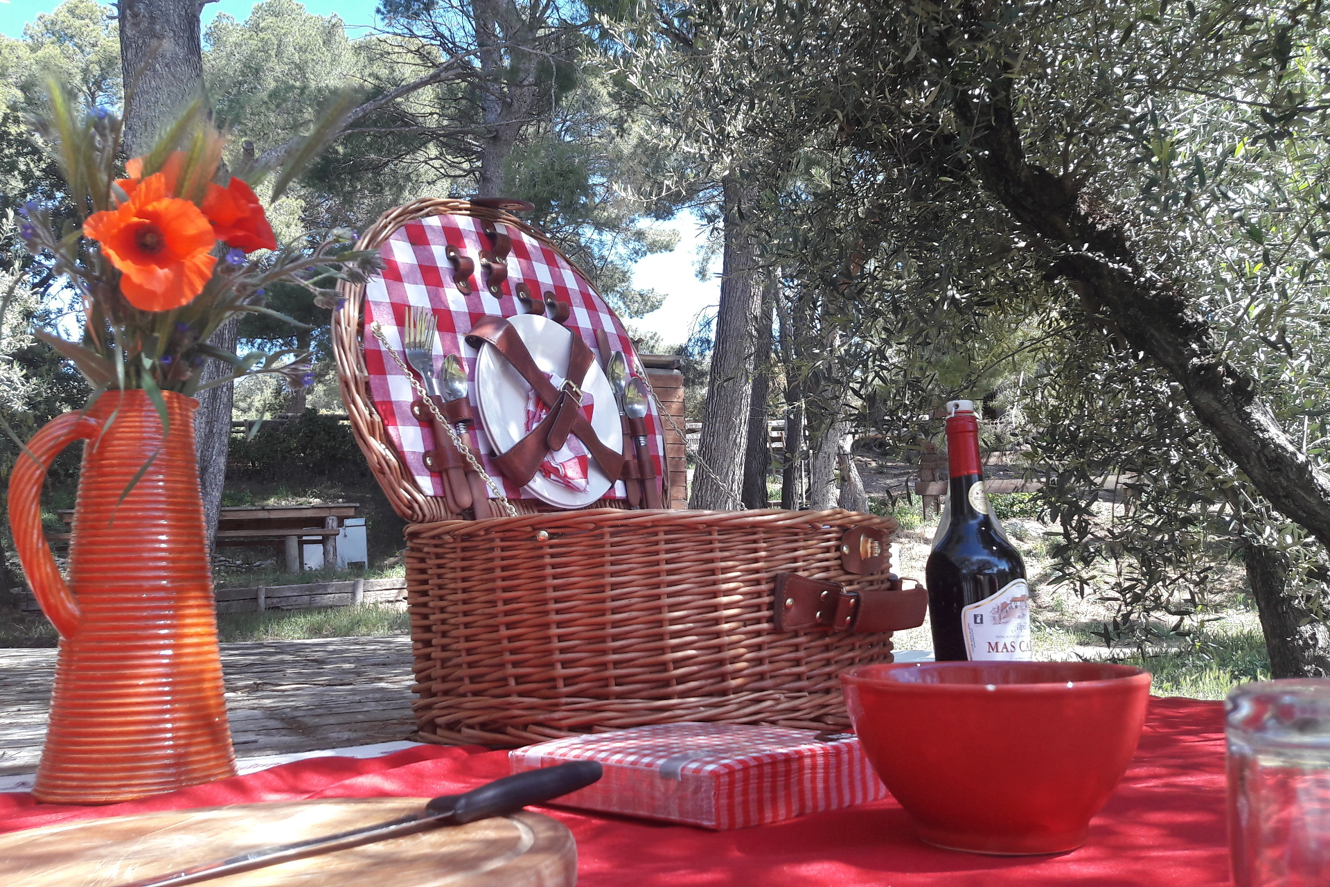 a red set for picnic