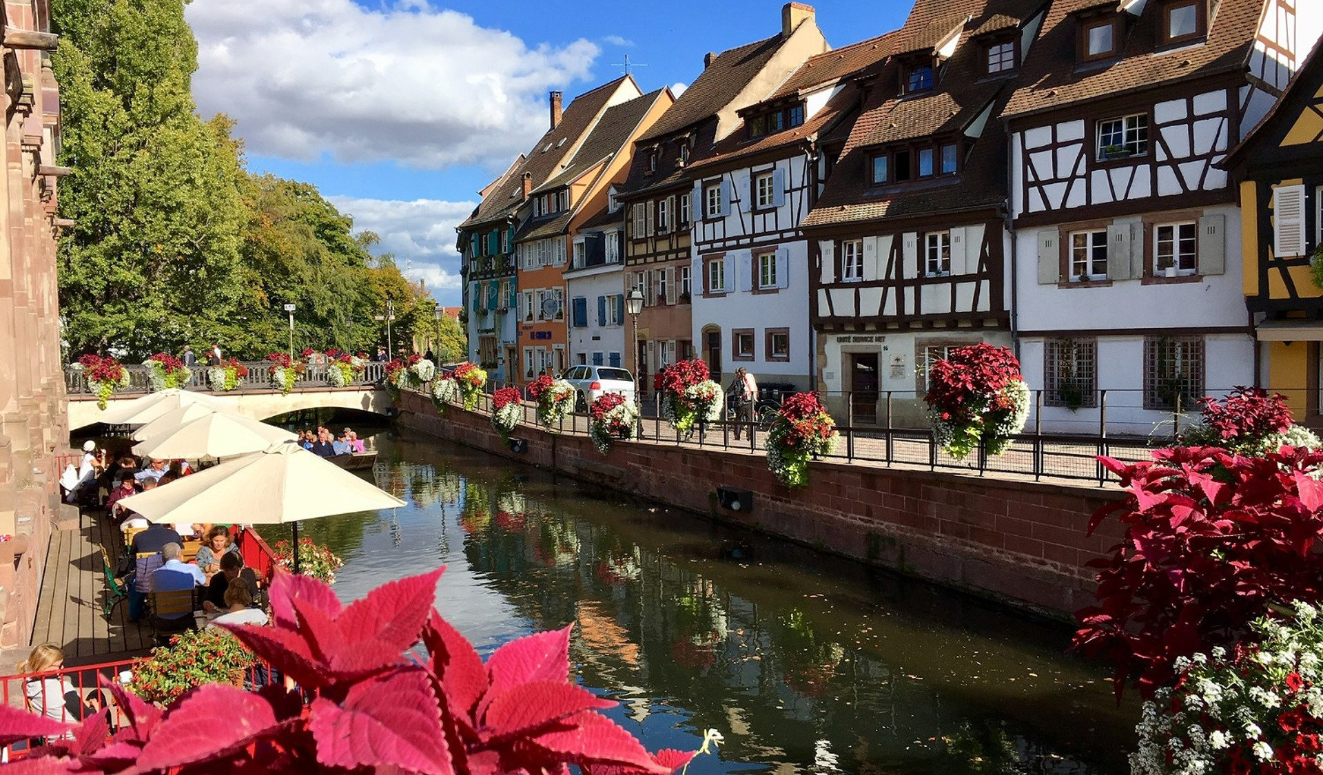 private tour-half-timbered-houses-Colmar-Alsace-France