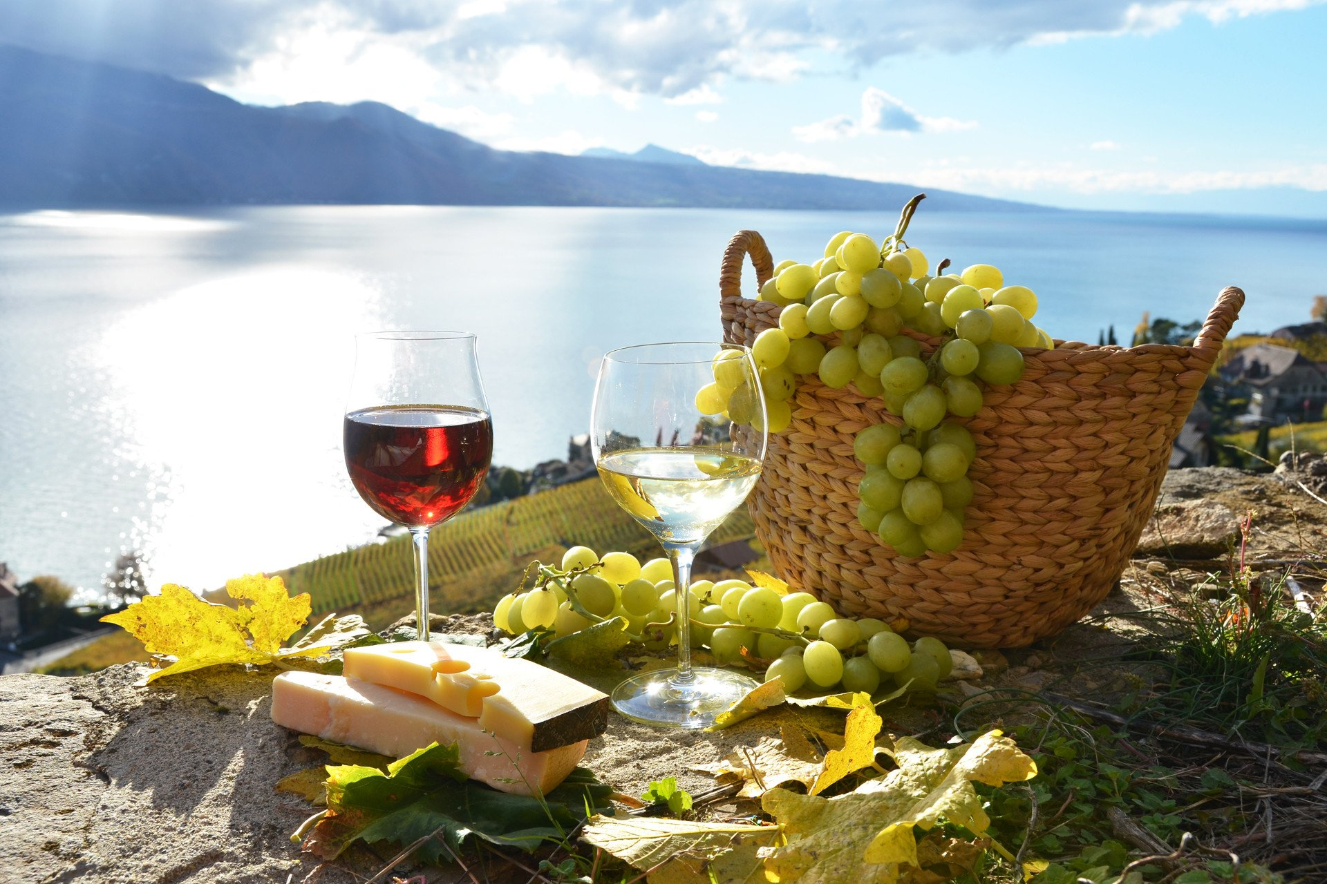 wine glasses-wine tasting-private tour-Lavaux-Switzerland-Geneva Lake