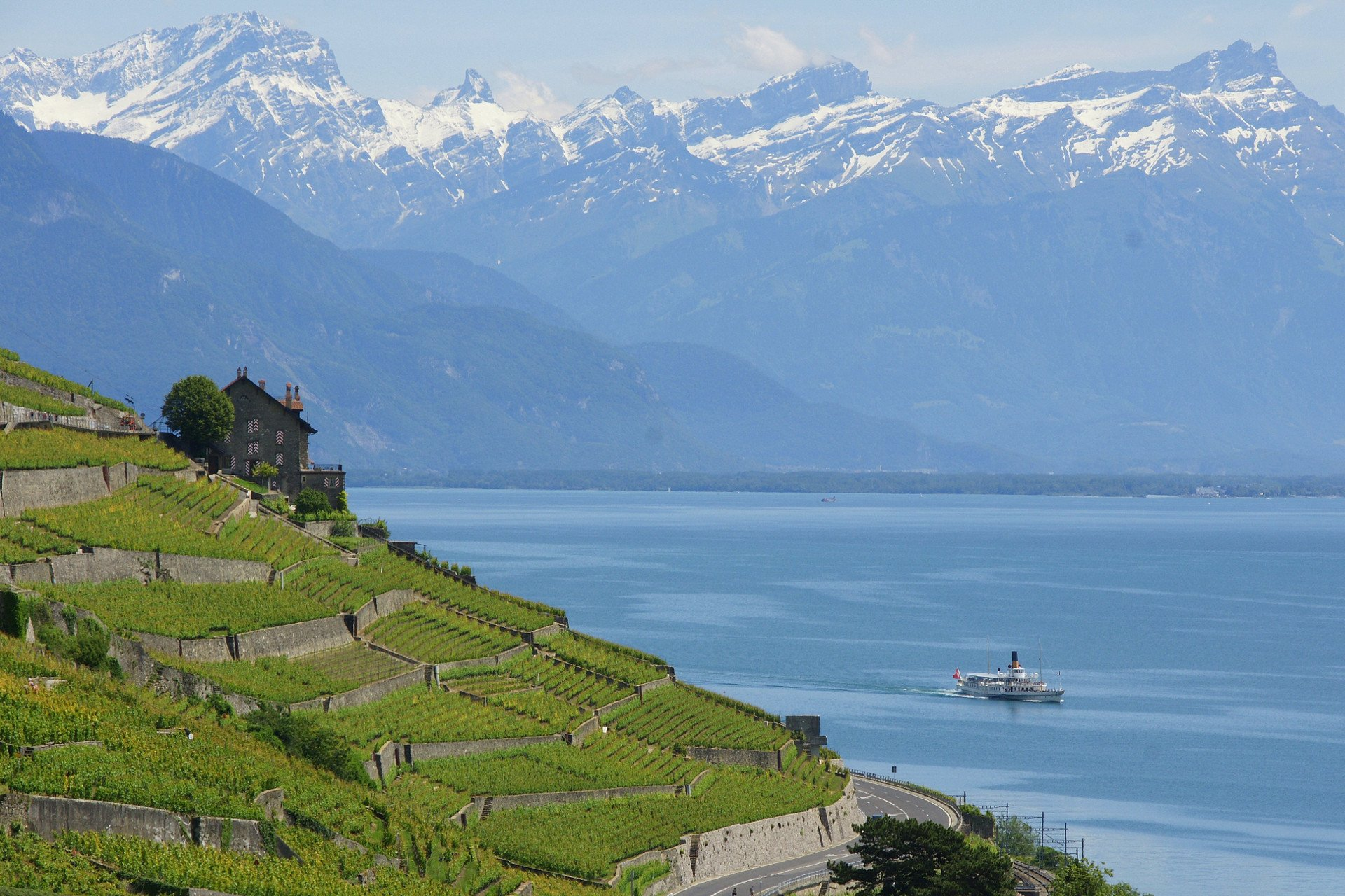 private tour-boat-nature-Leman Lake-Switzerland
