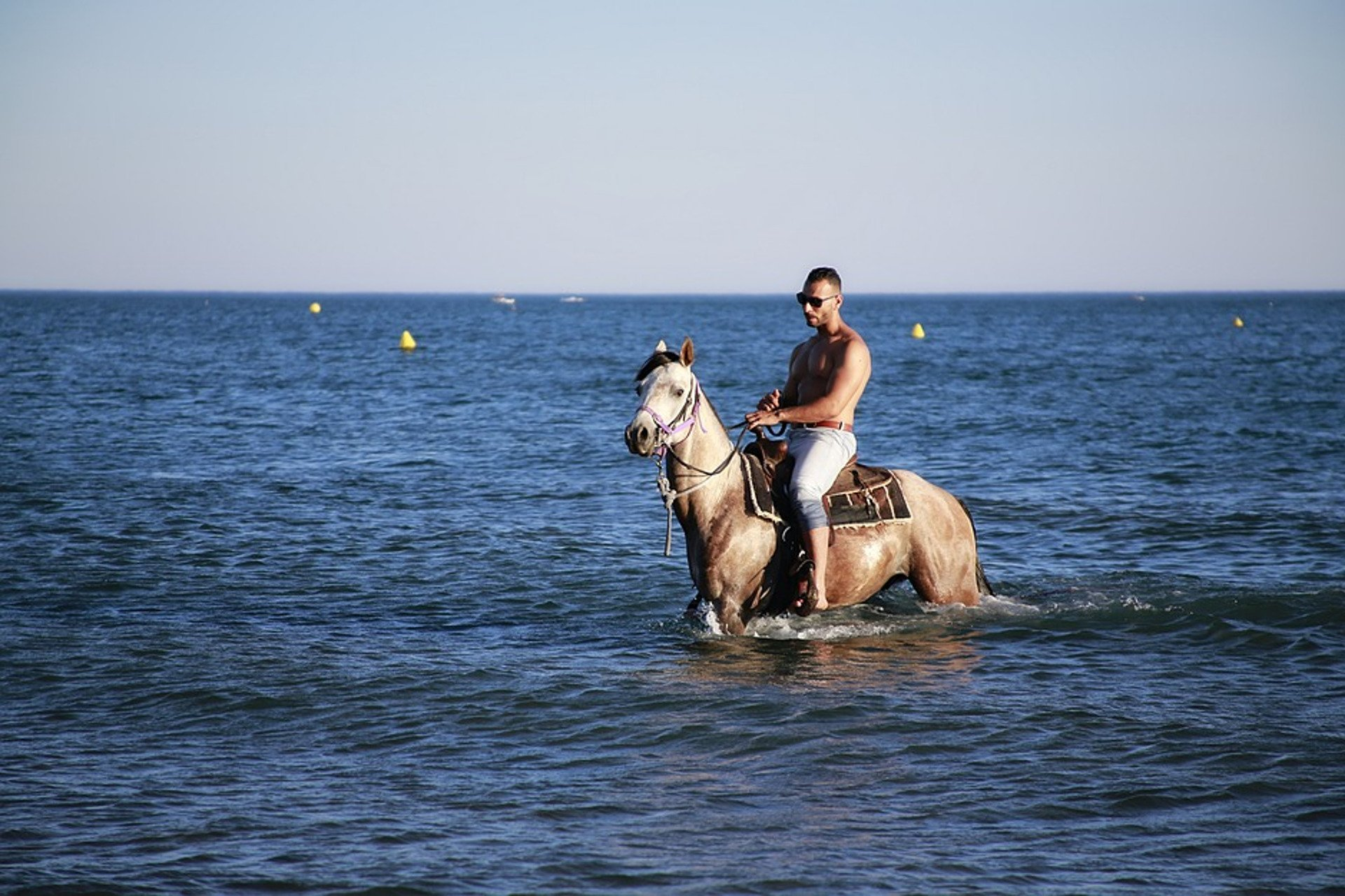a horse and rider in a shallow sea
