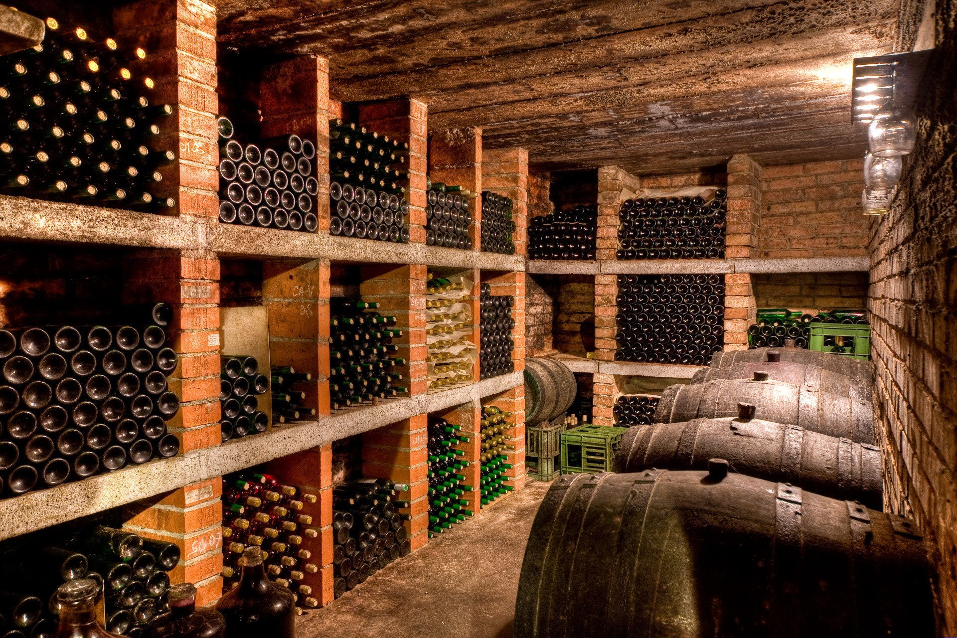 A cellar with bottles and barrels of wine