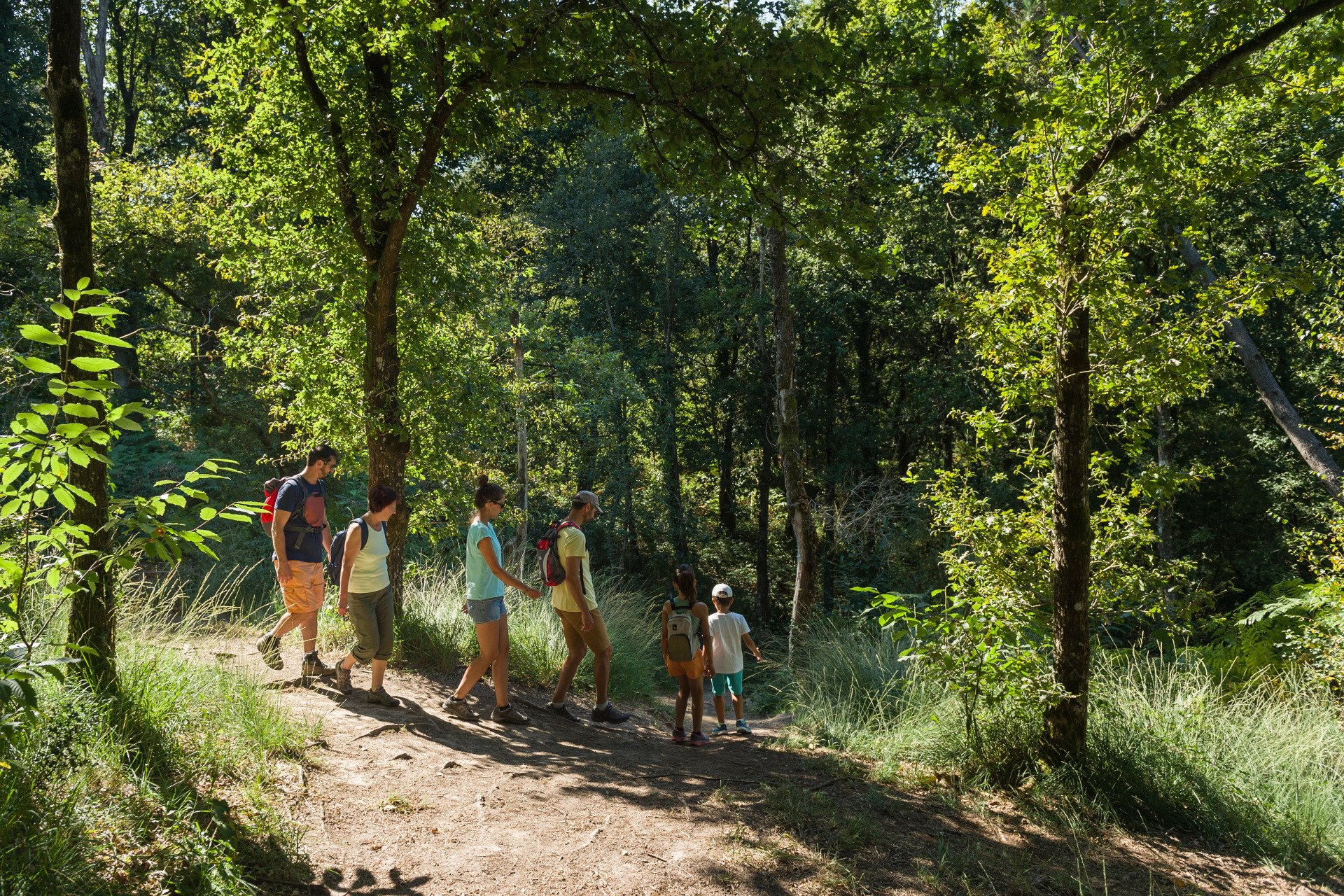 kids walking-private tour-Broceliande Forest-Brittany-France